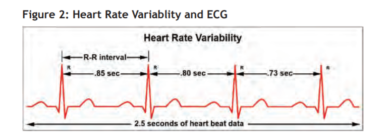 Fig 2 - heartbeat
