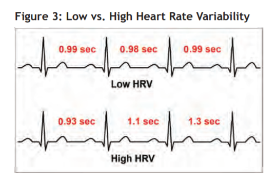 Fig 3 - heartbeat