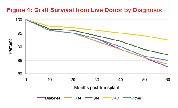 Fig1 - Graft Survival