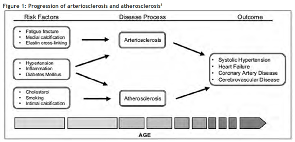 Figure 1: Progression of arteriosclerosis and atherosclerosis3